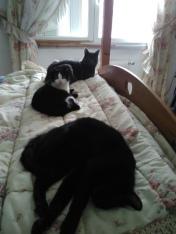avec la bande, on squatte le lit, comme ça c'est dit :)