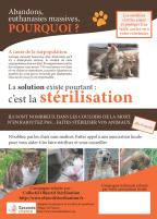 sterilisation-campagne
